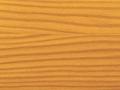 oregon-c-30-2-thumb-640-480-1334570833